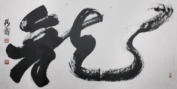 徐新国 02中国书法艺术家协会副主席